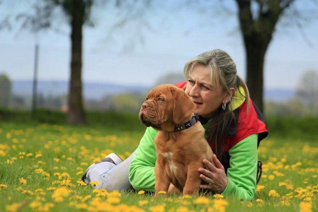Dog Coaching